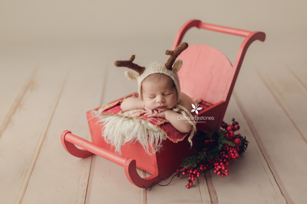 Red vintage sleigh